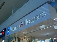 house_flowers_resize